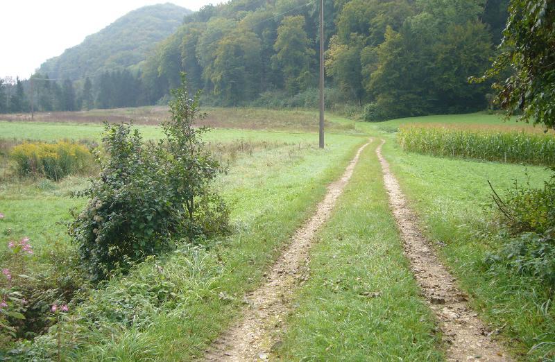 Radweg Wangental: Realisierung ab Herbst 2021